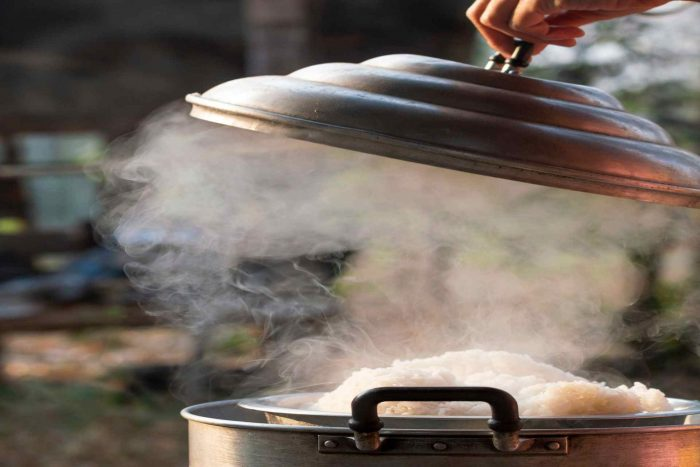 Steamer buying guide, the best steamer brands in the Iranian market